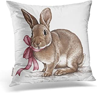 Emvency Square 18x18 Inches Decorative Pillowcases Easter Rabbit Bunny Engrave Vintage Graphic Cotton Polyester Decor Throw Pillow Cover with Hidden Zipper for Bedroom Sofa