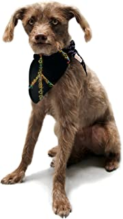"Kess InHouse Anne LA Brie""Peaceful Meditation"" Black Rainbow Pet Bandana and Scarf, 28 by 20 by 20-Inch"