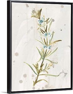 Antique Earthtone Herbs III Black Float Frame Canvas Art, 38