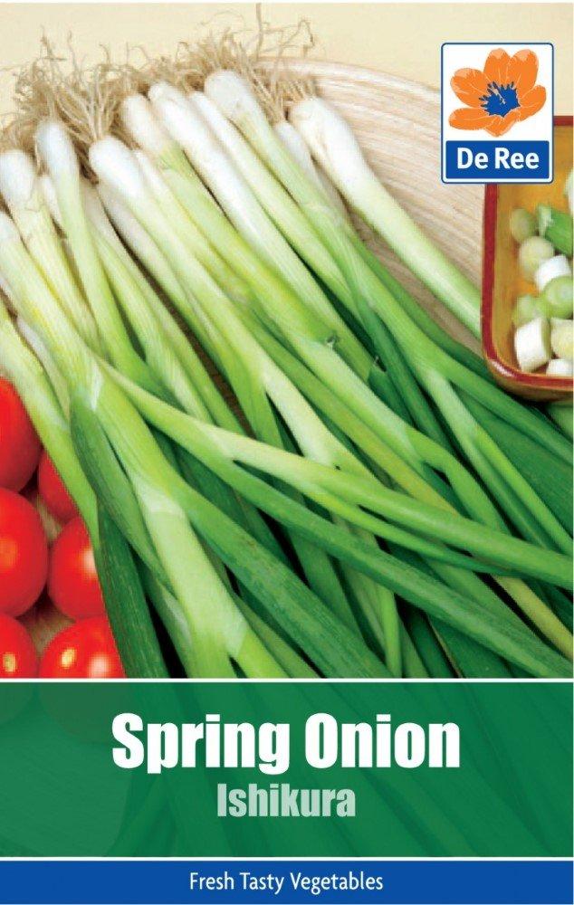 Spring Onion 800 Seeds White Lisbon JustSeed Vegetable Economy Pack