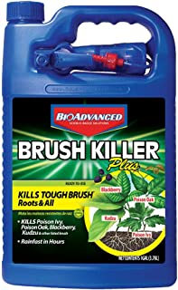 BioAdvanced 704655A Brush Killer Plus, Kills Poison Ivy, Blackberry, Kudzu, 1-Gallon, Ready-To-Use
