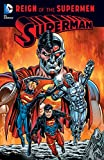 Superman: Reign of the Supermen (Superman: The Death of Superman) (English Edition)