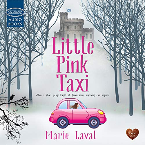 Little Pink Taxi Audiobook By Marie Laval cover art