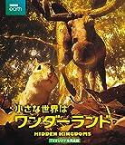 小さな世界はワンダーランド TVオリジナル完全版 [Blu-ray] image