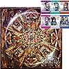 【早期購入特典あり】 Anfang 【Blu-ray付生産限定盤】(CD+2BD+フォトブックレット)(バックステージパス風ステッカー1枚(ランダム全6種)