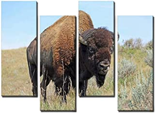 4 Panel Canvas Pictures Bison on prairie Home Decor Gifts Canvas Wall Art for your Living Room