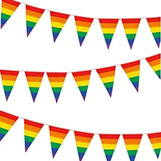 Whaline Gay Pride Rainbow Flag Rainbow Pennant Banner, Colorful Flag Banner Stripes 30ft Triangle Flags Bunting for Party, Celebration, Home, School, Bars, Restaurants, Garden Decoration