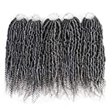 14Inch Spring Twist Crochet Hair 5pcs Synthetic Crochet Hair Bomb Twist Curly Ends Passion Twist Hair for Women(24Strands/Pack, Grey#)