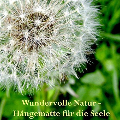 Wundervolle Natur - Hängematte für die Seele Titelbild