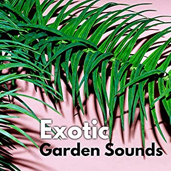 Exotic Garden Sounds – Hypnotizing Flora and Fauna Melodies for Relax, Study, Meditation or Sleep