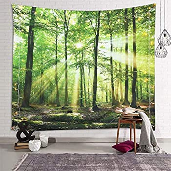 Sevendec Forest Tapestry Wall Hanging Trees Trunk Nature Green Sunlight Wall Tapestry for Livingroom Bedroom Dorm Home Decor W90  x L71