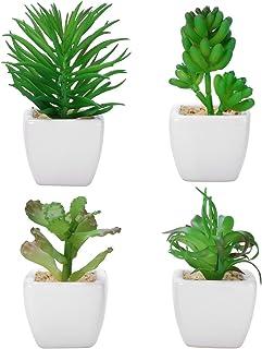 Cactus artificiel Jardin f/é/érique Bureau D/écoration dint/érieur #1 gerFogoo Plante succulente artificielle non en pot Maison