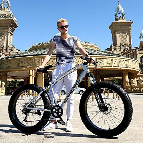 XHJZ Mountain Bikes, 24/26 Inch Fat Tire Hardtail Mountainbike, hochfesten Stahlrahmen Mountainbike Doppelscheibenbremse Fahrrad für Erwachsene,B,24 inch / 27 Speed