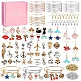 Expandable Bangle Bracelets with Charms, Ouddy Charm bracelet kit Charms for Jewelry Making Jump Rings Jewelry Charms Pendants for DIY Craft Girls (with Gift Box and Tools)