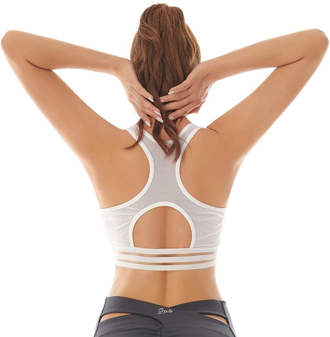 Wirefree Padded Removable Bras Workout Gym Fitness Activewear Running Top Womens Mesh Sports Bra