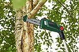 Zoom IMG-1 bosch home and garden potatore