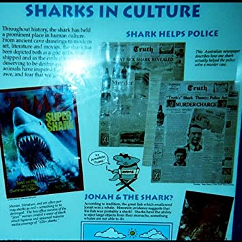 Sharks in Culture