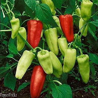 25+ Heirloom Organic Pepperoncini, Golden Greek Superior Quality Pepper Seeds-D 90