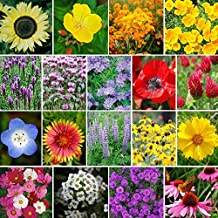 Best bee and butterfly seed mix Reviews