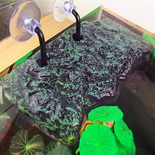 Zantec Turtle Platform Aquarium avec Disque sucé Plateforme rectangulaire pour Aquarium