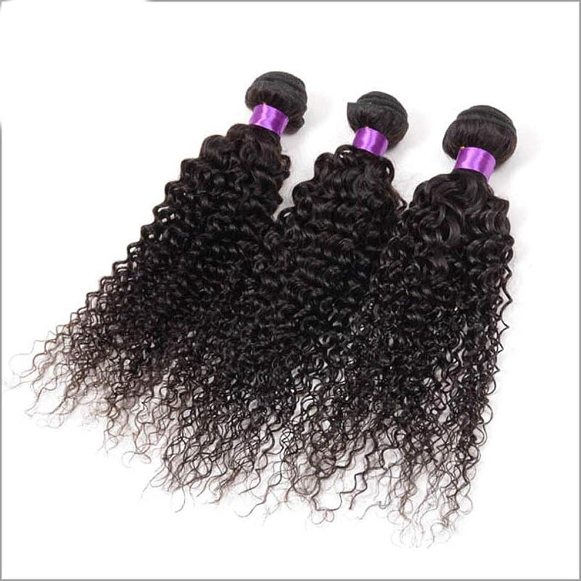 ロンドン逃げる勇気のあるYESONEEP ブラジルの変態巻き毛の束人間の髪の束3バンドルナチュラルブラックカラー複合毛レースのかつらロールプレイングかつら (色 : 黒, サイズ : 16 inch)