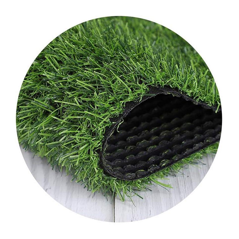 かなりのゴルフ構造ALYR 人工芝 じゅうたん、現実的 人工芝 芝 合成 芝生 人工 グラスカーペット 10ミリメートルヒゲ屋外ガーデンビュー用,Green_12x42ft/4x14m