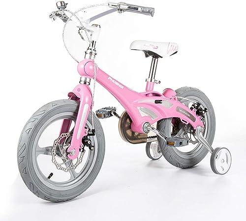 almacén al por mayor Axdwfd Infantiles Bicicletas Bicicleta Bicicleta Bicicleta para niñas con Ruedas de Entrenamiento, 12 14 16 Pulgadas Bicicletas Ajustables para niñas de 8 a 8 años de Edad Princesa Estilo Bicicleta Plegable  tienda de venta en línea