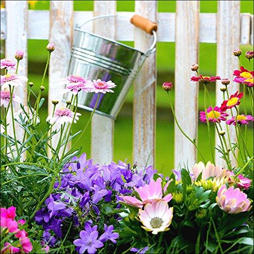 "Pro-Art gla769b Wandbild Glas-Art \""Lovely garden II\"", 50 x 50 cm"