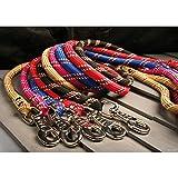 Laisse nylon corde 3 m noire largeur 13 mm environ pour chien/Zolux