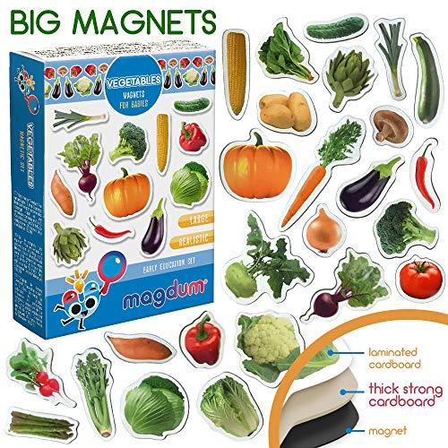 MAGDUM Verduras Imanes Foto Real Pizarra Infantil