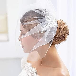 Aukmla Birdcage veil Lace Fascinator Veil Tulle Face Blusher Veil Stella Veil with Metal Comb for Brides (White)