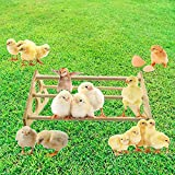 COMOPEZ Chicken Perch for Chicks Strong...