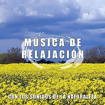 Musica Relajacion con Sonidos de la Naturaleza