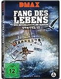 Fang des Lebens - Der gefährlichste Job Alaskas - Season 10 (Discovery - 5 Discs) [DVD]
