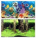 Acuario fotográfico posterior 200x 3040cm por ambos lados posterior pantalla Plantas Nemo