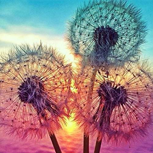 MXJSUA DIY 5D Diamond Painting by Number Kits Full Drill Rhinestone Pictures Arts Craft Home Wall Decor Dandelions 12x12inch