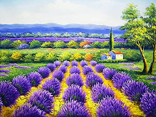 Lavender oil painting kit by number, suitable for adults, children, with brush, acrylic paint, home decoration art D-4 50x70cm