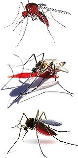 CQHUI 3D Spider Tatoo Scorpion Tijdelijke Stickers voor Halloween Fake Tattoo Body Art Joke (Color : RC 411)