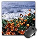 3D Rose'California Big Sur Coast California Poppy Wildflowers' Matte Finish Mouse Pad - 8 x 8' - mp_230024_1