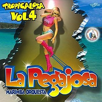 Tropicalosa Vol. 4. Música de Guatemala para los Latinos