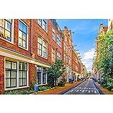 Puzzles Rompecabezas, Ámsterdam Street View - Hijos Adultos Rompecabezas Inteligencoa Juguete Educativo 500/1000/1500/2000/3000/4000/5000/6000 Piezas 0222 (Color : Partition, Size : 3000 Pieces)