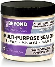Beyond Paint Multi-Purpose Sealer Pint