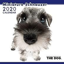 The Dog Wall Calendar 2020 Miniature Schnauzer