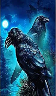 Yeefant Ravens Diamond Painting Sets for Kids,Full Drill 5D DIY Rhinestone Paintings Embroidery Paintings Cross Stitch by Number Kits for Home Wall Decor Art Craft Supplies 30x40cm