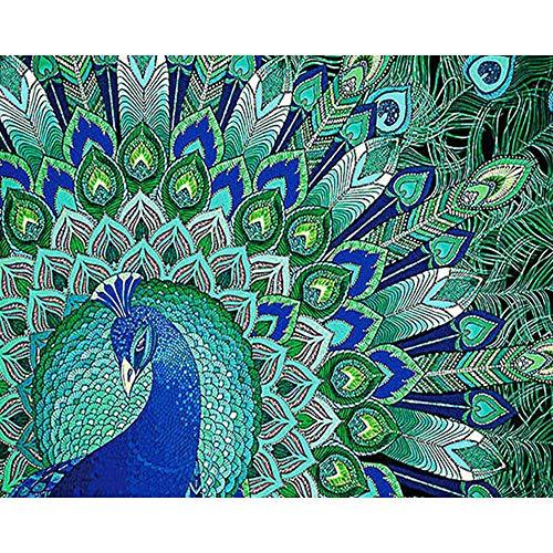 Diamant schilderij diamant schilderij kit Makkelijk te gebruiken kruissteek steentjes Abstracte pauwenveer-30X40CM