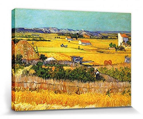 1art1 Vincent Van Gogh - La Cosecha, Llanura De Crau Cerca De Arles, 1888 Cuadro, Lienzo Montado sobre Bastidor (40 x 30cm)