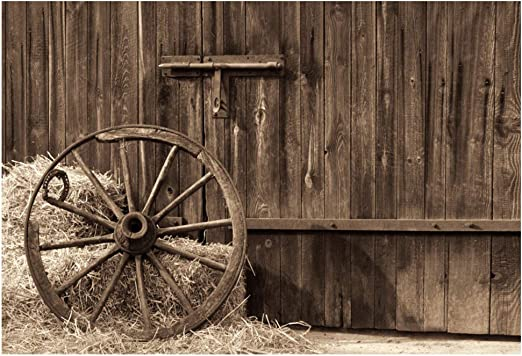 8x12 FT Barn Wood Wagon Wheel Vinyl Photography Backdrop,Country House in Ecuador Red Wall Window Summer Flowers Straw Roof Background for Photo Backdrop Baby Newborn Photo Studio Props