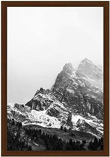 Premium 20 x 30 Russet Wood Frame (Derby)