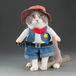 Amazon.es: disfraz para gato