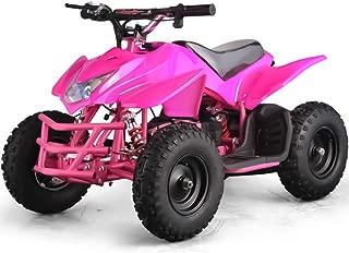 Titan 350W 24V 2-Speed 6'' High-Tensile Steel Brush Kids Ride-On Mini Quad, Pink
